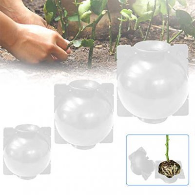 PLANT-ROOTING-REUSABLE-DEVICE-Transparent