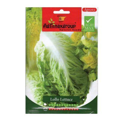 Lollo-lettuce-seeds-AGRIMAX