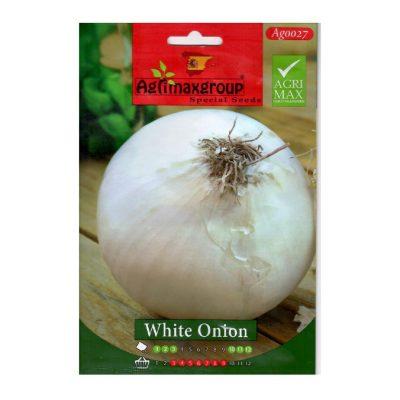 بذور-البصل-الأبيض