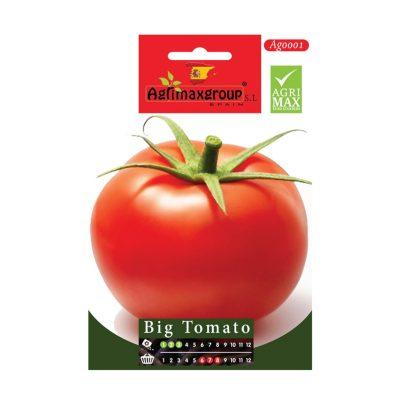 BIG-TOMATO-SEEDS-AGRIMAX-1G